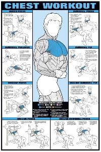 Expert Leisure   Fitness Testing   Fitness Graphs