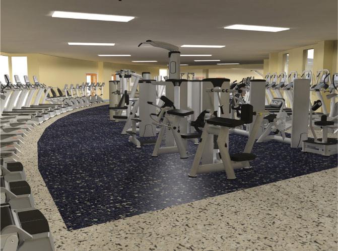 Expert leisure gym layout design